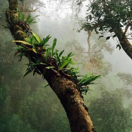 Du khách đến đây luôntruyền tai nhau về vẻ đẹp và sự hấp dẫn khi đến thăm Khu bảo tồn tự nhiên Bukeo thuộc tỉnh Bukeo.Ảnh:@knutsimen
