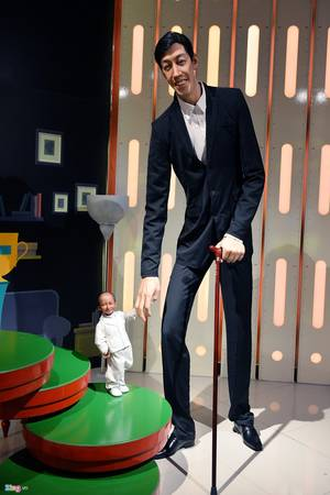 Hai người cao và thấp nhất thế giới là anh Sultan Kosen (Thổ Nhĩ Kỳ, cao 2,51 m, sinh năm 1982) và chị Jyoti Amge (Ấn Độ, cao 62,8 cm, sinh năm 1993).