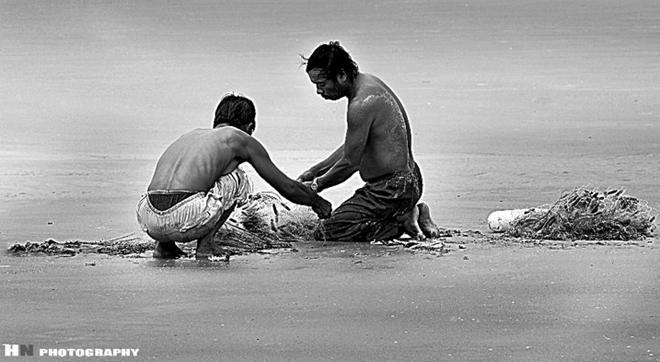 Không khí lao động hăng say, rộn ràng cả một vùng biển. Những hàng mồ hôi lăn dài trên khuôn mặt góc cạnh của những người dân chài. Bao đời nay vẫn thế, họ vẫn mải miết với những con sóng dập dềnh.