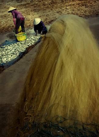 Người vùng biển chất phác, làn da rám nắng, ngày ngày kiếm cơm bằng những thứ quà của biển.