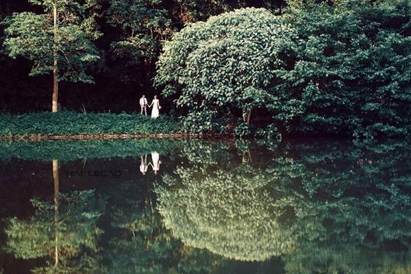 Cúc Phương (Ninh Bình) là rừng mưa nhiệt đới xanh quanh năm. Bất kỳ thời điểm nào, Cúc Phương cũng sẵn sàng đón khách du lịch tham quan, khám phá và chụp ảnh. Thời điểm thích hợp nhất để đến đây là từ tháng 11 đến tháng 4, thời điểm ít mưa, nên an toàn và thuận tiện nhất.