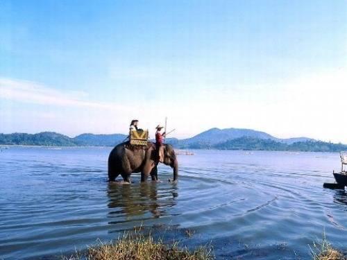 Hồ Lắk, Đắk Lắk: Hồ Lắk nằm bên thị trấn Liên Sơn, huyện Lắk, cạnh tuyến đường giao thông giữa Buôn Ma Thuột và Đà Lạt, cách TP Buôn Ma Thuột khoảng 56 km về phía Nam theo quốc lộ 27. Để khám phá vẻ đẹp tự nhiên của hồ Lắk, có hai lựa chọn: đi thuyền độc mộc hoặc cưỡi voi. Hành trình dạo chơi hồ Lắk trên lưng voi thường kéo dài 30 phút, khách cũng có thể thỏa thuận trước nếu muốn có thêm thời gian khám phá vẻ đẹp huyền bí của hồ. Ảnh: Phương Thảo.