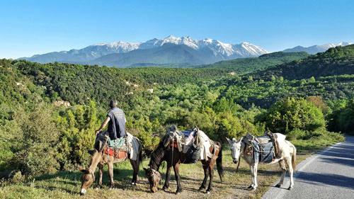 Đỉnh cao nhất trên núi này là Mitikas và cũng là đỉnh cao nhất tại Hy Lạp. Ảnh: En.