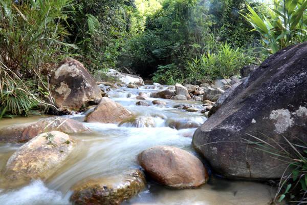 Con suối nhỏ dưới chân thác.