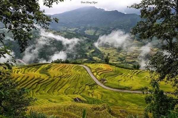 Là một xã miền núi thuộc huyện Bát Xát, tỉnh Lào Cai, Y Tý nằm trên vùng núi đá có độ cao khoảng 2.000 m so với mặt nước biển.