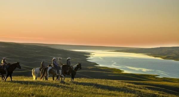 Cưỡi ngựa bên sông South Saskatchewan: Thử hòa mình vào cuộc sống trên thảo nguyên ở La Reata, ngày ngày cưỡi ngựa, ăn thịt nướng và được nghe những câu chuyện về các chàng cao bồi là trải nghiệm đáng nhớ. Ảnh: Greg Huszar.