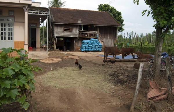Một căn nhà người dân tộc có sân để phơi lương thực. Những bao xanh là lúa đã phơi khô chờ xay xát - Ảnh: Trung Oanh