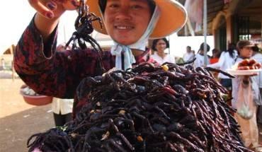 dac-san-nhen-den-dang-so-cua-campuchia-ivivu-5
