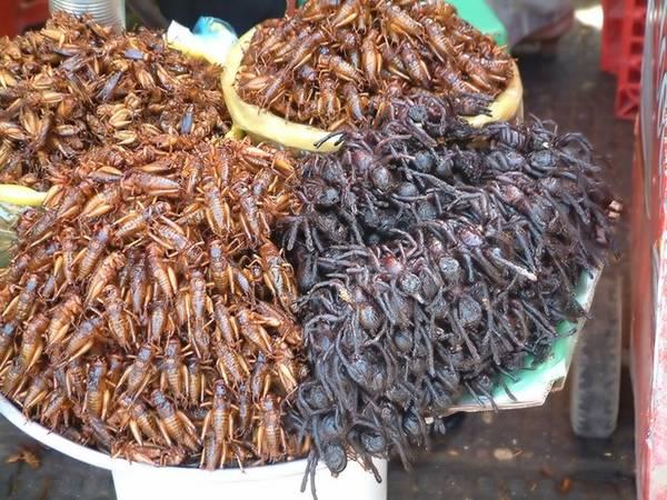 Đặc sản nhện đen đáng sợ của Campuchia