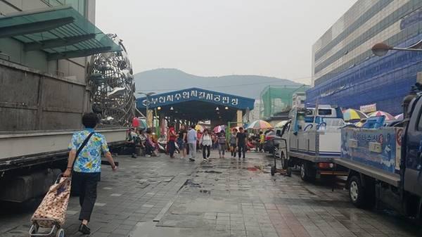 Chợ cá Jagalchi được hình thành từ năm 1963. Chợ rộng gần 65.000 m2. Khoảng hơn 30% sản lượng đánh bắt cá của cả đất nước Hàn Quốc đều đi qua chợ này. Chợ đầu mối này cũng rất thu hút du khách.