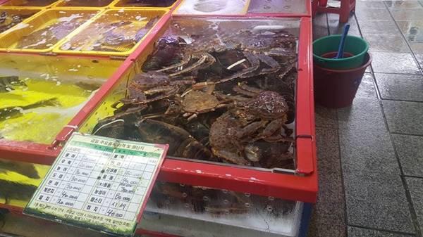 Dù đi giữa hàng trăm gian hàng, bán đủ loại thủy hải sản, bạn vẫn không bị cảm giác khó chịu của mùi tanh hay mùi mặn của biển.