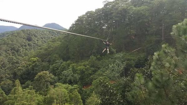 Đến Datanla, du khách được trải nghiệm cảm giác làm Tarzan đu dây bay giữa rừng thông. Ảnh: Duy Hoàng.