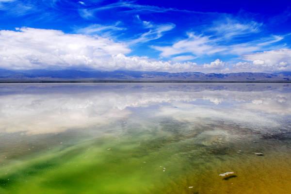Du khách có thể bơi lội hoặc nằm trên hồ mà không cần đến áo phao. Muối và khoáng chất trong hồ cao hơn 8 lần so với mực nước biển nên làm cho chúng ta có thể nổi trên bề mặt.