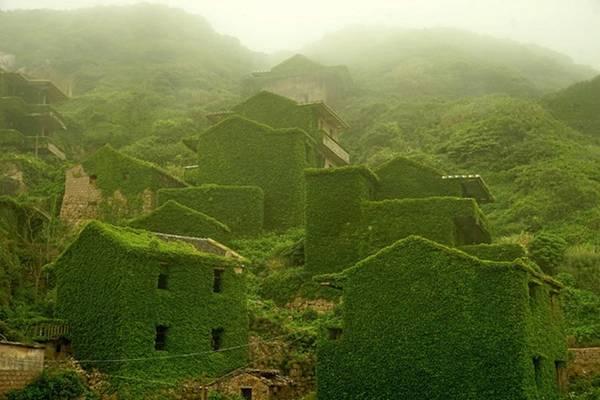 Làng chài bị bỏ hoang ở tỉnh Chiết Giang, Trung Quốc đẹp như cổ tích khi được khoác lên mình tấm áo xanh của cây cỏ dại.