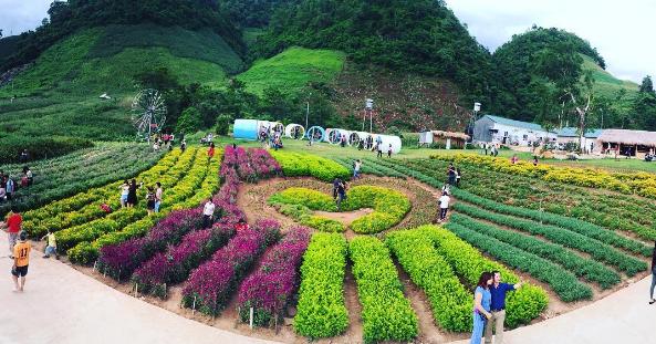 Kết quả hình ảnh cho vườn hoa happy land