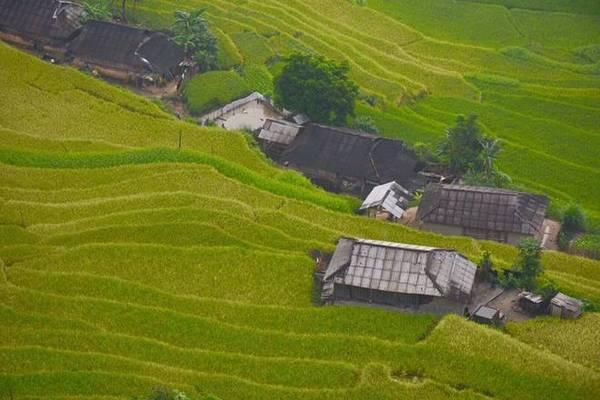 Hoàng Su Phì khá hẻo lánh nên chưa có nhiều nhà nghỉ cũng như các khách sạn. Khách du lịch đến với Hoàng Su Phì chủ yếu thường nghỉ lại ở nhà nghỉ trung tâm thành phố Hà Giang, với giá từ 250.000 đồng một đêm. Ảnh: Phạm Châm.
