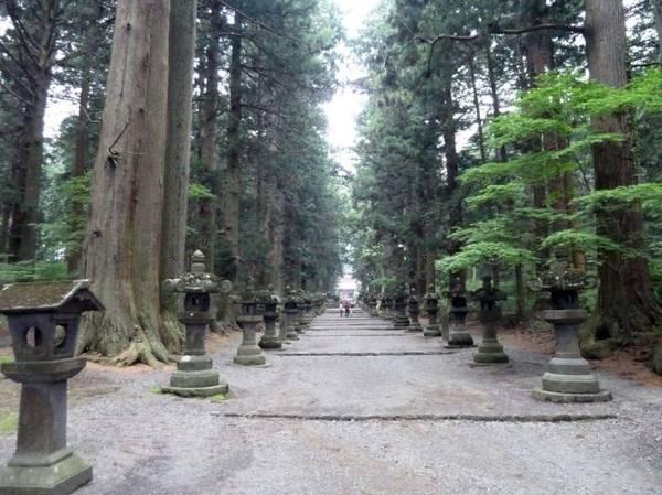 Đường dẫn đến đền Sengen Jinja - Ảnh: wp