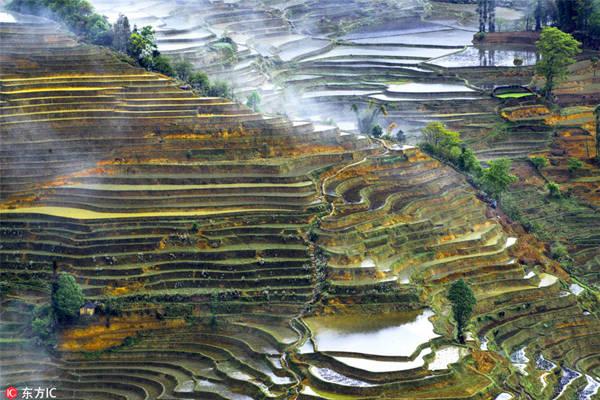 Người dân thờ thần mặt trời, mặt trăng, núi, sông, rừng và các hiện tượng tự nhiên khác. Họ sống trong 82 ngôi làng nằm giữa núi rừng và ruộng bậc thang. Hệ thống quản lý đất đai của ruộng bậc thang thể hiện sự hài hòa đặc biệt giữa con người và môi trường tự nhiên, cả về trực quan và sinh thái, dựa trên cấu trúc xã hội và tôn giáo đặc biệt, lâu dài