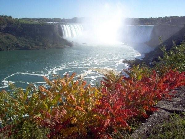 Khu vực Niagara, Ontario: Thác Niagara, làng Niagara và đại lộ ven sông Niagara là tất cả các khu vực bạn phải đến thăm trong mùa thu. Bạn không chỉ có thể được thưởng thức một số loại rượu vang tốt nhất ở Canada trong làng Niagara, mà bạn cũng có thể ngắm thác Niagara được bao quanh bởi màu sắc mùa thu hoặc tham quan những tán lá mùa thu trên đại lộ ven sông đáng yêu.