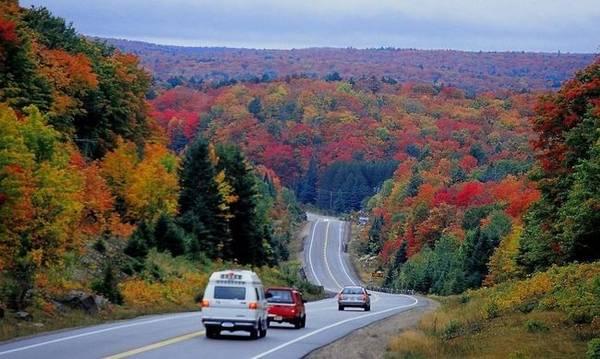 Công viên tỉnh Algonquin, Ontario: Từ tuần cuối cùng của tháng Chín đến hết tháng mười, lá trong các khu vườn liên tục thay đổi màu sắc. Algonquin là rất nơi tập trung rất nhiều cây phong và cây thông đã tạo ra một môi trường tương phản tuyệt vời để khám phá.