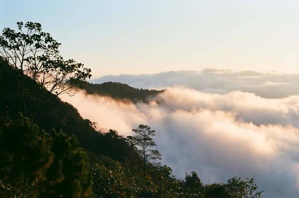 Mây Y Tý thường đẹp nhất vào mùa đông. Khi trời lạnh và sau mưa, gió nhẹ thì biển mây là lý tưởng. Leo lên những đỉnh cao nhìn xuống, thấy mây lúc bồng bềnh như một tấm thảm dày, lúc lại len lỏi giữa các ngọn cây như những sợi tơ lảng bảng.