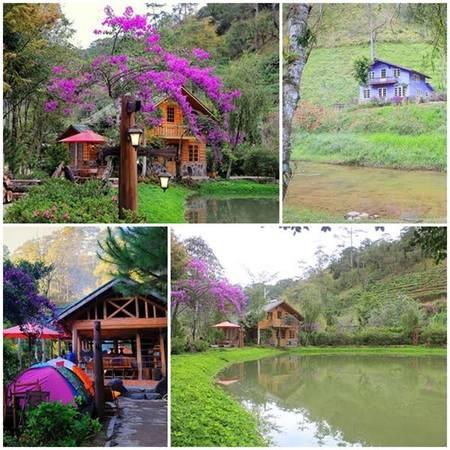 Ma rừng lữ quns là địa điểm hấp dẫn không thể ngó lơ khi du lịch Đà Lạt mộng mơ. Ảnh: khachsandalat.net