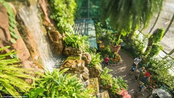 Với vườn bươm bướm, thác nước trong nhà, rạp chiếu phim hoạt động 24/24h, không ngạc nhiên khi Changi chiếm vị trí số 1 trong bảng xếp hạng sân bay tốt nhất thế giới 4 năm liên tiếp.