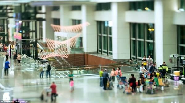 Sân bay Changi tiếp đón hơn 145.000 lượt khách mỗi ngày, đã giành thêm một giải thưởng Skytrax World Airport Awards cho sân bay tốt nhất thế giới hồi tháng 3.