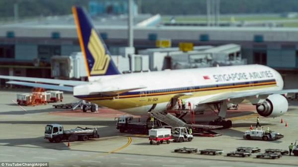 Bên ngoài đường băng, bạn có thể thấy những chiếc máy bay khổng lồ được làm sạch và kiểm tra bảo dưỡng, trong khi hàng hóa được nhanh chóng được chuyển lên.
