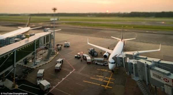 Changi là sân bay quốc tế sấm uất thứ 6 thế giới, với mật độ cất và hạ cánh trung bình 90 giây một lượt.