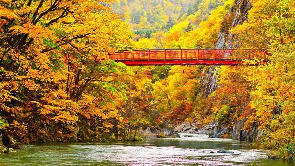 Những rặng núi thuộc công viên quốc gia Daisetsuzan là nơi đầu tiên nhìn thấy sắc lá chuyển vào mùa thu mỗi năm.