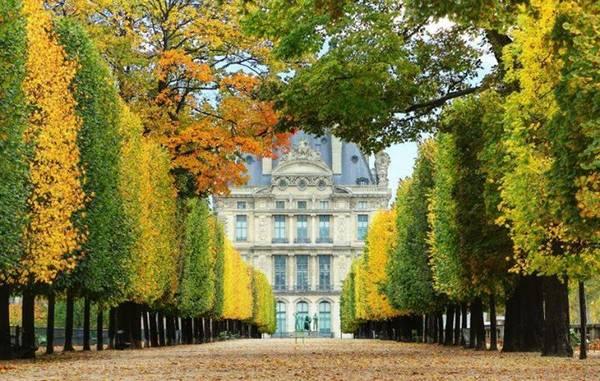 Khu vườn Tuileries với những bức tượng trang trí tinh tế, hồ nuớc lớn và những lối đi phủ lá vàng thơ mộng là nơi lý tưởng để tận hưởng mùa thu.