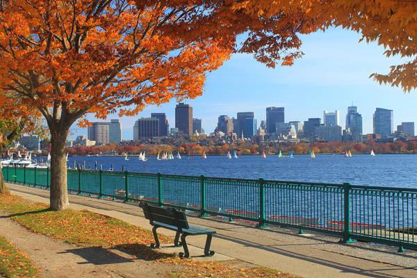 Boston ngập trong sắc vàng những ngày thu