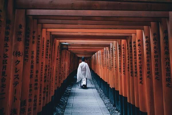 Ngôi đền Fushimi Inari Taisha mang vẻ đẹp vừa cổ kính, vừa hiện đại vì được bảo tồn rất tốt. Nhiều doanh nghiệp đóng góp tu bổ đền và những lối đi trong đền.