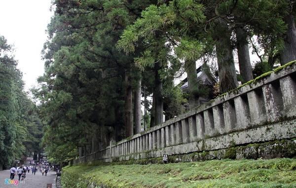 Lăng mộ đền thờ của tướng quân Tokugawa được thiết kế tạo ra được một không gian rất trang nghiêm. Lối vào cổng chính rộng rãi, đường trải đá nhỏ màu xám, những rặng thông cao vút tạo ra một không gian uy nghi, thanh tịnh.