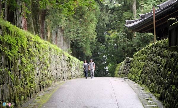 Đại lộ những cây tuyết tùng được trồng xếp hàng dài ngay ngắn nằm ở hai bên vệ đường, được gọi là Sugi.