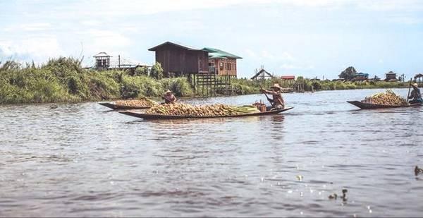 Hồ Inle có cảnh sắc, khí hậu tuyệt vời và lãng mạn, thích hợp đi du lịch vào mọi thời điểm trong năm. Nhưng thời điểm tuyệt vời nhất là vào khoảng tháng 9-10 hàng năm, lúc diễn ra rất nhiều lễ hội với màu sắc bản địa truyền thống.