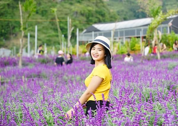 Một bạn trẻ đến từ thành phố Hà Nội tạo dáng bên vườn hoa. Chủ vườn chia sẻ, mỗi ngày trung bình nơi đây đón 300 - 400 lượt khách.