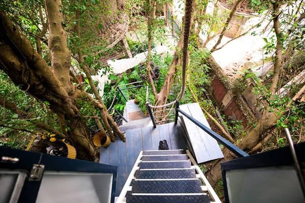 Giống như tên gọi, nơi đây là không gian nghệ thuật tổng hợp (hội họa, âm nhạc, điêu khắc...) gắn liền với thiên nhiên cây cỏ.