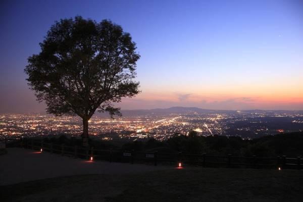 14. Núi Wakakusa (Nara): Cây cỏ tạo ra khung cảnh lãng mạn để ngắm nhìn thành phố Nara cho các cặp đôi. Ngoài ra, trên núi còn có đền thờ và khu rừng Kasugayama Primeval, nơi được UNESCO công nhận là di sản thế giới.