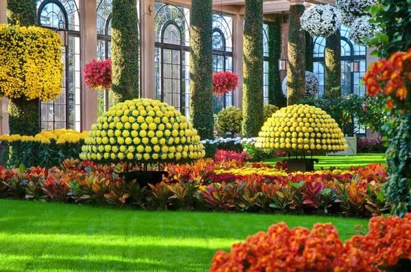 Vườn Longwood, Quảng trường Kennett, bang Pennsylvania: Bước vào đây Longwood, bạn sẽ có cảm giác như bước vào một bức tranh tuyệt mỹ - thiên đường của những người làm vườn nổi tiếng. Từ 22/10-20/11, tại Longwood sẽ diễn ra lễ hội hoa cúc, với hơn 17.000 bông hoa đầy màu sắc được trang hoàng lộng lẫy. Bạn không nên bỏ lỡ cây hoa với 1.500 bông hoa được gắn lên một cách hoàn hảo.