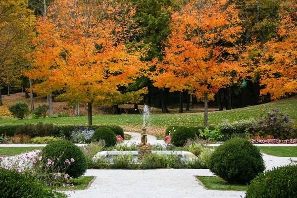 Vườn Mount, Lenox, Massachusetts: Khu vườn này thực ra là nhà của tiểu thuyết gia nổi tiếng Edith Wharton, sẽ mở cửa vào cuối tháng 10.