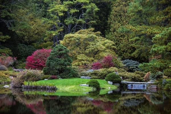 Vườn đỗ quyên Asticou, Mount Desert Island, Maine: Từ tháng 5-10, những cây đỗ quyên tuyệt đẹp ở vườn bảo tồn tại Mount Desert Island, Maine, bung toả những màu sắc ấn tượng. Màu mận, vàng, và những tông màu trầm của mùa thu nơi đây sẽ khiến bạn khó quên.