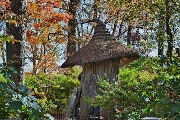 """""""Khu rừng bị phù phép"""" Winterthur, Delaware: Có rất nhiều thứ để xem và làm ở Winterthur - ngôi nhà cũ của Henry Francis du Pont - khiến bạn có thể sẽ cần hơn một ngày để khám phá và tận hưởng, đặc biệt là """"khu rừng bị phù phép"""" - một khu vườn kỳ dị y như trong truyện."""