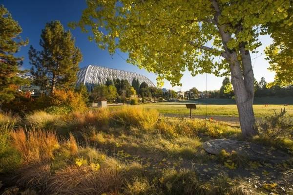 Vườn bách thảo Denver: Được xếp hạng là một trong những khu vườn thực vật hàng đầu tại Hoa Kỳ, vườn bách thảo Denver rộng khoảng 9 hecta. Ở đây có vườn hoa súng, vườn dành cho trẻ em, kim tự tháp khoa học, vườn phong cách quốc tế... Các loại cây cỏ bản địa mang lại màu sắc và kết cấu độc đáo cho cảnh quan khu vườn vào mùa thu.