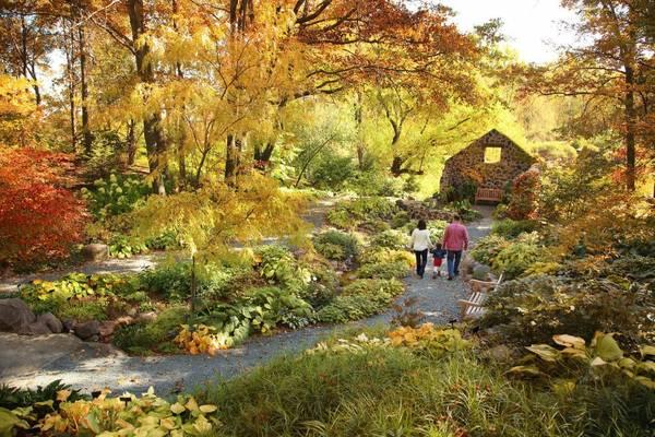 Vườn bách thảo Green Bay: Khu vườn mê hoặc khách tham quan với đa dạng các chủng loại cây bản địa với màu sắc ấn tượng.