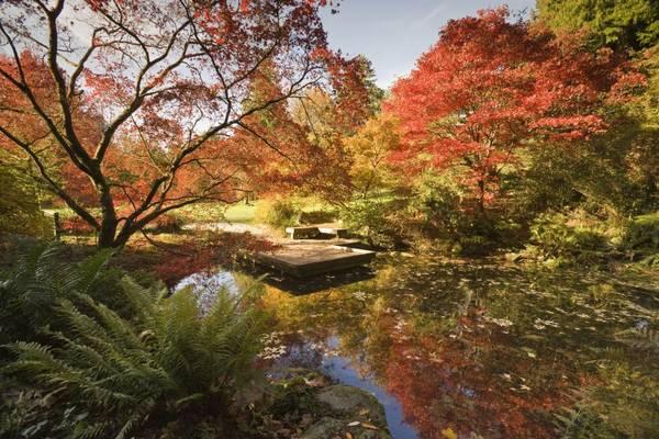 Vườn cây gỗ công viên Washington, Seattle: Nằm trên bờ hồ Washington, vườn bách thảo rộng 93 ha sẽ khiến bạn đắm chìm trong vẻ đẹp của thiên nhiên tươi tốt. Bạn sẽ phải mất phí vào cửa, nhưng hoàn toàn đáng để bỏ tiền.