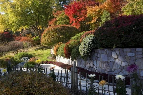 Vườn bách thảo Missouri, Phố Louis, Missouri: Được mở cửa trở lại năm 1859, vườn bách thảo Missouri là một nơi thư giãn tuyệt vời, tách khỏi sự hối hả và nhộn nhịp của thành phố. Nơi đây có các loài lan quý hiếm nhiều nhất thế giới mà còn rực rỡ các sắc màu của mùa thu.