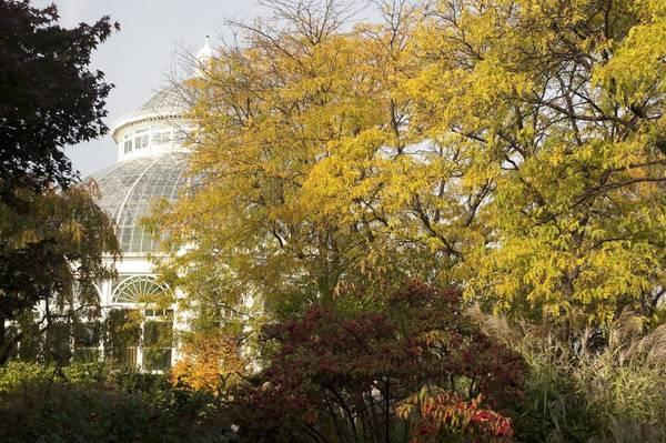Vườn bách thảo New York: Mùa thu là một trong những thời điểm đẹp nhất để đến thăm New York, đặc biệt là tham quan vườn bách thảo 125 năm tuổi. Khu nhà kính trồng cây là một nơi thích hợp để đi thăm nếu thời tiết quá lạnh.
