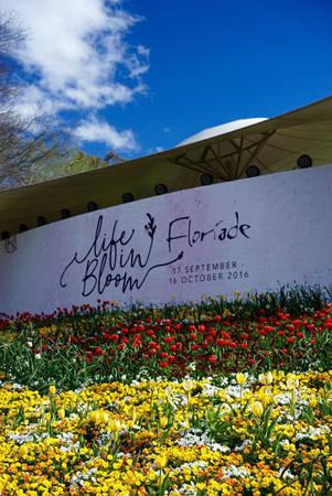 Lễ hội hoa Floriade - Ảnh: N.N.Tuấn